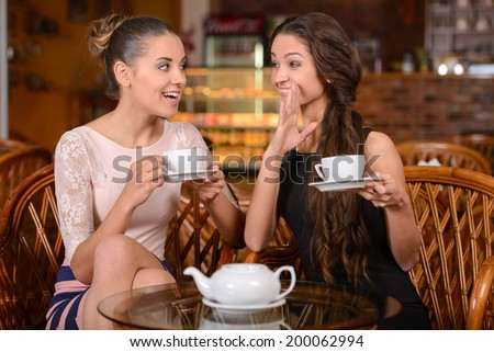 Two friends drinking tea and talking in the cafe - stock photo