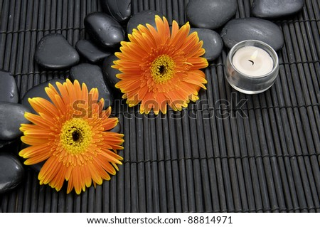 Two gerbera flower and zen stoneswith candle on bamboo mat - stock photo