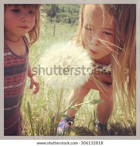 Two girls blowing on flower- With Instagram effect - stock photo