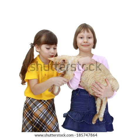Two girls hold their cat in hands isolated on white background - stock photo