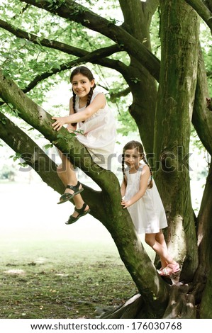 Two girls with dark braided hair up high in a tree.