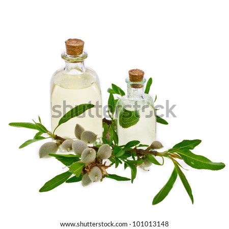 Two glass bottles filled with almond oil and fresh almonds  isolated on the white background - stock photo