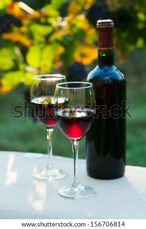 Two glasses of red wine and bottle - stock photo