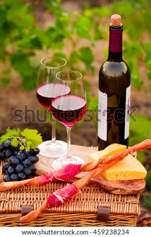 Two glasses of red wine with bottle,  bread, meat, grape and cheese on the vineyard background
