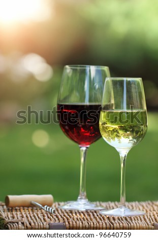 Two glasses of the white and red  wine in the garden