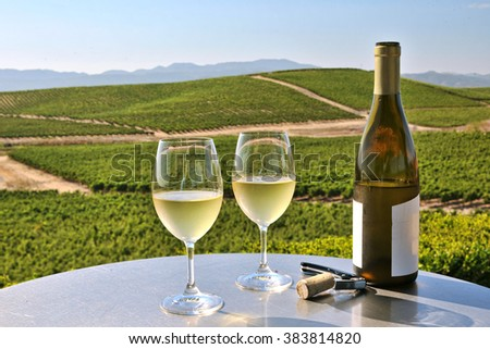 two glasses of white wine overlooking napa valley - stock photo