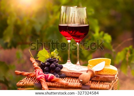 Two glasses tasty red wine on the grape plantation background