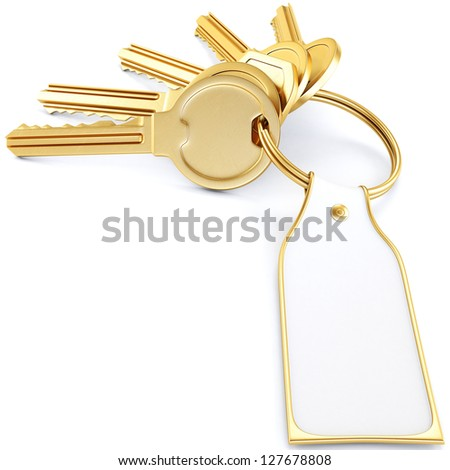two golden keys with a label. Isolated on white. - stock photo