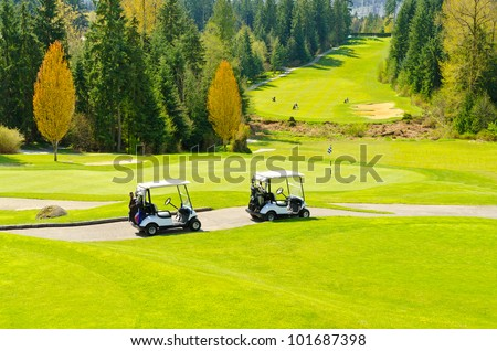 Two golf carts over nice green course - stock photo