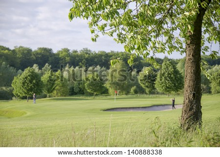 two golfer playing in background of tree on golf course