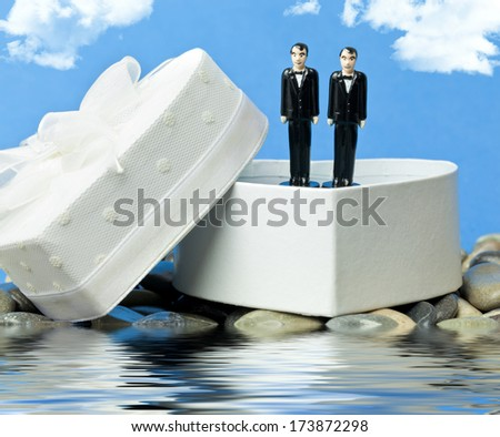 Two grooms - stock photo