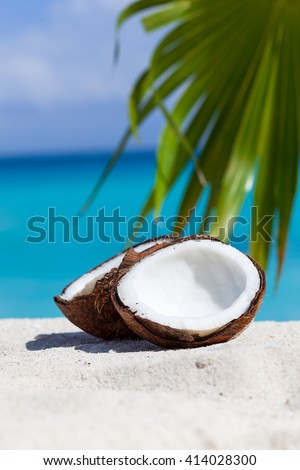 Two halfs of cracked brown coconut on white sandy beach with palms leaf and turquoise sea background, close up - stock photo