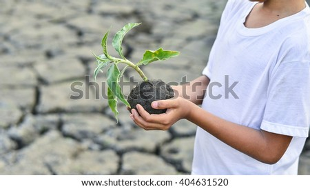 Two hands holding grass plant over cracked land - stock photo