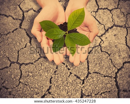 Two hands holding small tree over dry earth with cracked textured , vintage filter effect. Save earth concept