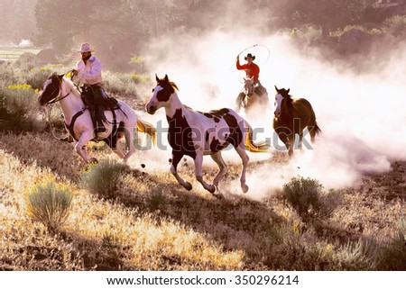 Two handsome western cowboys roping wild horses - stock photo