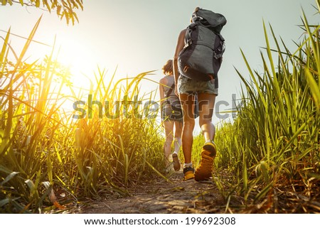 Two hikers walking through green lush meadow - stock photo