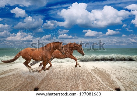 Two horses running along seashore,  blue sea and sky, waves, white clouds, picture for chinese year of horse 2014 - stock photo