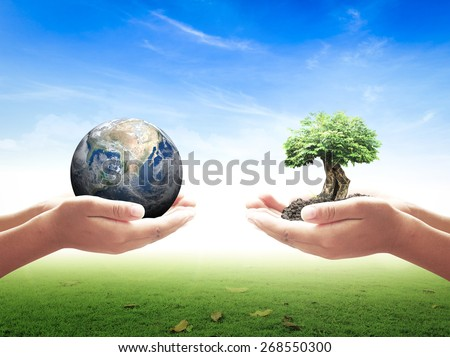 Two Human Hand Hold Planet Heart Shape Big Tree Ecology CSR Earth Hour Love Recycle Arbor Planet Idea Team Unity Organ Donate Globe Cool Plant Spring Synergy. Elements of this image furnished by NASA. - stock photo