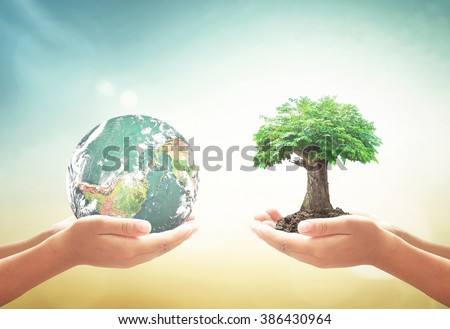 Two human hand holding planet and big tree. World Environment Day, Fund, Earth Hour, Ecology, Preserve, Wisdom, CSR, ROI, Trust, Spring Time, Love concept. Elements of this image furnished by NASA. - stock photo