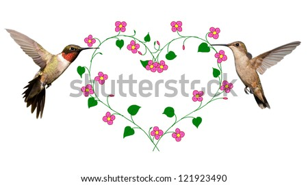 Two Hummingbirds carrying a flower vine shaped like a heart; a Valentine's Day design on white