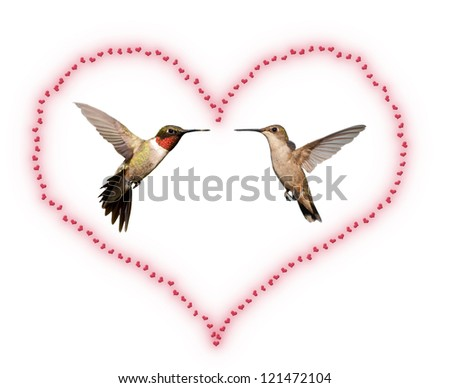 Two Hummingbirds inside a Valentine's Day heart; isolated on white - stock photo