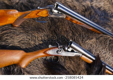 two hunting gun on the skin of wild boar - stock photo