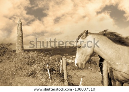 two Irish horses and ancient round tower in the beautiful Ardmore countryside of county Waterford Ireland sepia - stock photo