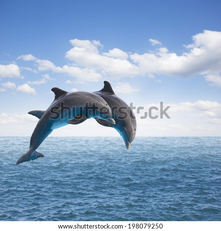 two jumping dolphins, seascape with deep  ocean  waters and cloudscape - stock photo