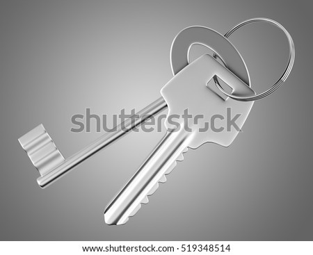 two keys isolated on gray background. 3d illustration