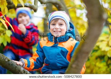 Two kids boys enjoying climbing on tree on autumn day. Preschool children in colorful autumnal clothes learning to climb, having fun in garden or park on warm sunny day.