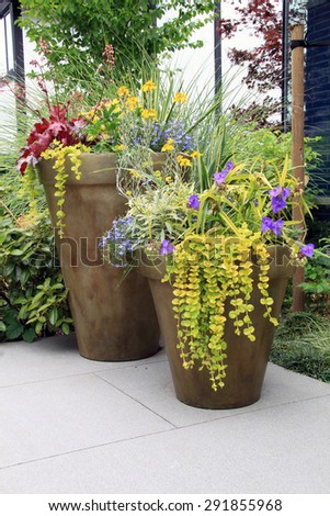 Two large containers of perennial garden flowers.  - stock photo