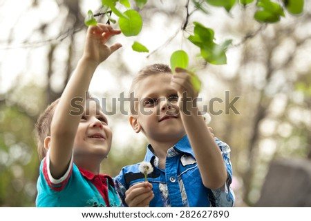 Two little boys friends in colorful clothing walking hand in hand and hugging in summer or autumn garden. Brother love - stock photo