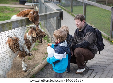 Two little cute boys and young father feeding animals in zoo