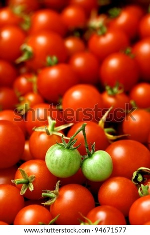 two little green tomatoes (like cherries) on many red tomatoes