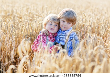 Two little sibling boys and friends in check shirts having fun and speaking on yellow wheat field in summer. Active outdoors leisure with children on warm summer day. Children playing together. - stock photo