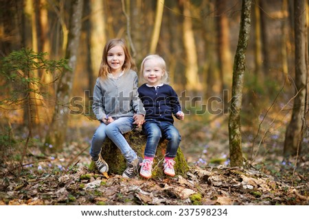 Two little sisters picking the first flowers of spring on sunny evening - stock photo