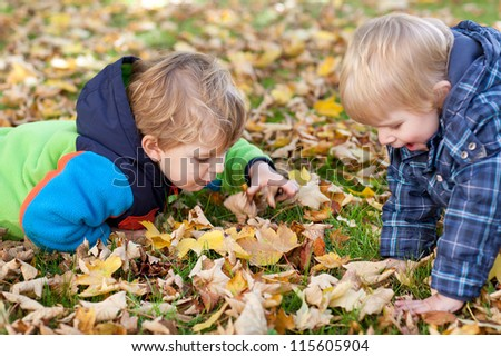 Two little toddler boys in autumn park with foliage and chestnut