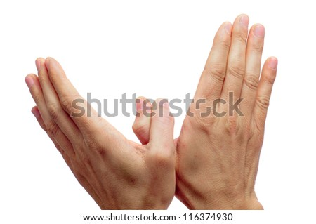 two man hands forming a dove of peace on a white background - stock photo