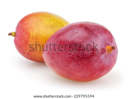 Two mangoes isolated on white background with clipping path - stock photo