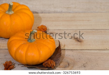 Two mini pumpkins on wood with copy space