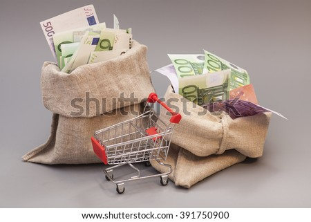 Two money bag with euro and shopping cart on gray - stock photo