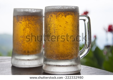 Two Mugs of Chilled Beer - stock photo