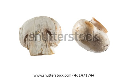 two mushrooms isolated