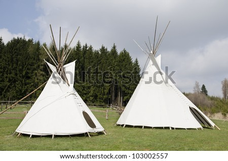 Two native american wigwams on the meadow