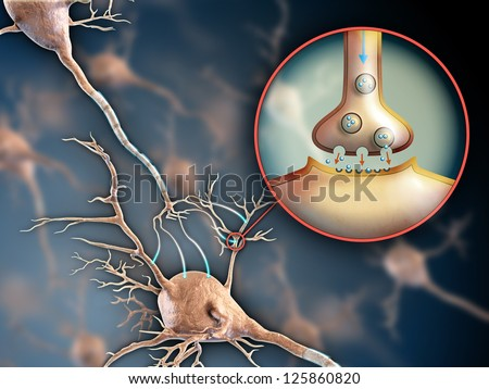 Two neurons connecting by using electrochemical transmissions. Digital illustration. - stock photo