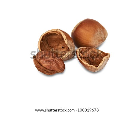 Two nuts a filbert and one kernel of a nut in a shell isolated on a white background.