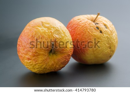 Two old apples. Pair of whole overripe wrinkled old apples close up on neutral background. - stock photo