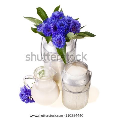 Bouquet Blue Campanula Flowers Glass Bottle Stock Photo 126812942