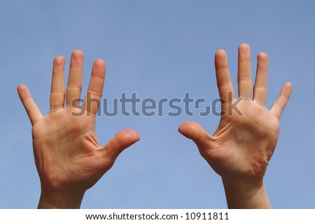 Two open palm - stock photo