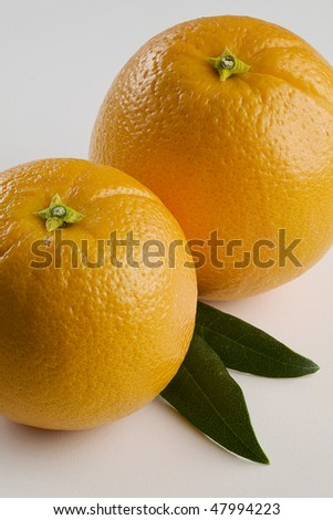 Two Oranges with Leaves Isolated on White cropped Vertical - stock photo